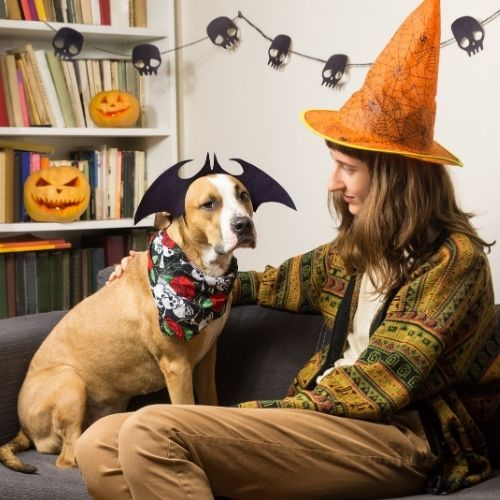 dog and owner dressing up and matching each other to win a halloween contest.