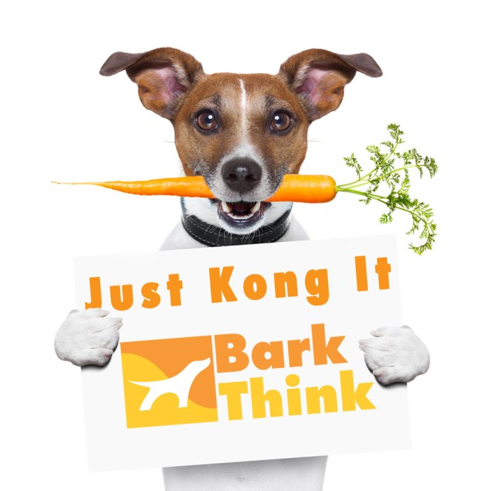 Learn how a KONG Dog Toy works.  Some of the best ways to fill your KONG help provide dog owners with useful ways to maximize your dog's KONG chewing experience with yummy treats and rewards.