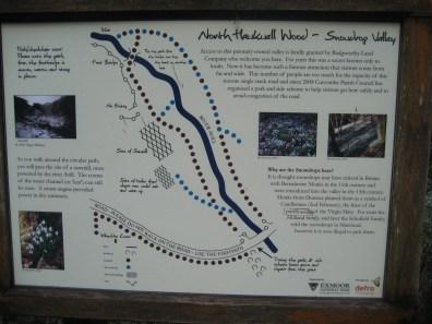 Snowdrop Valley map