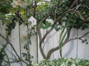 fence-illusion