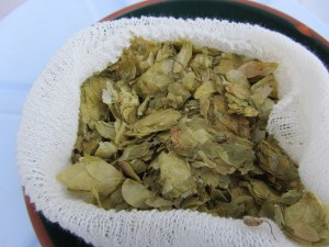 Old Lambic Hops