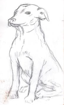 SketchBook_p03