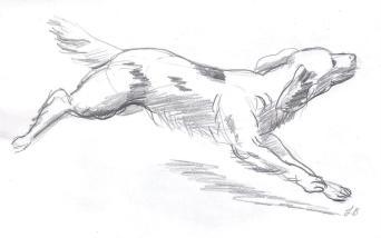 SketchBook_p12