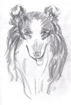 SketchBook_p13