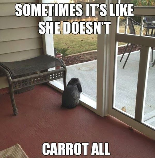 carrot all