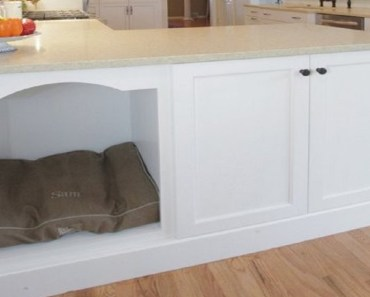 pet kitchen solutions featured