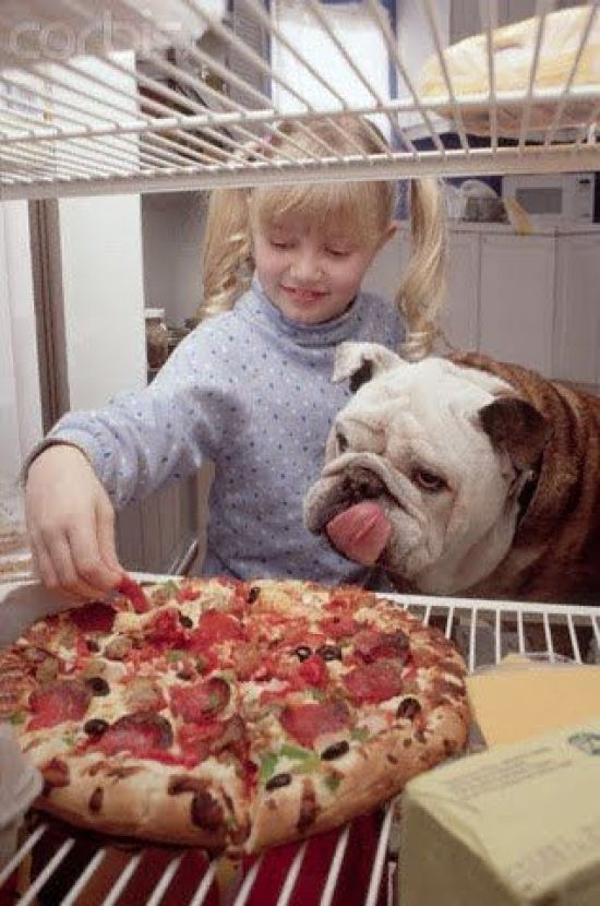 dogs and pizza 9