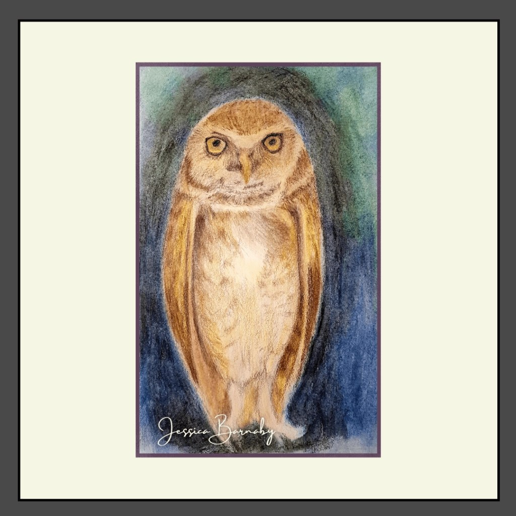 The Wise Night Owl Art, Coloured Pencil Art