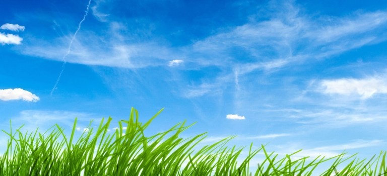Barnby needs you: Mowing