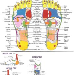 Foot Nerve Endings Diagram Jeep Wrangler Front Suspension Barnes And Crackle Reflexology