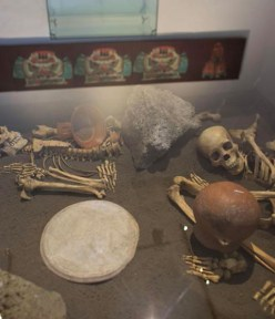 Archaeology Dig Reveals Details of Aztec Cannibalism