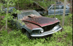 Abandoned Junkyard in Michigan