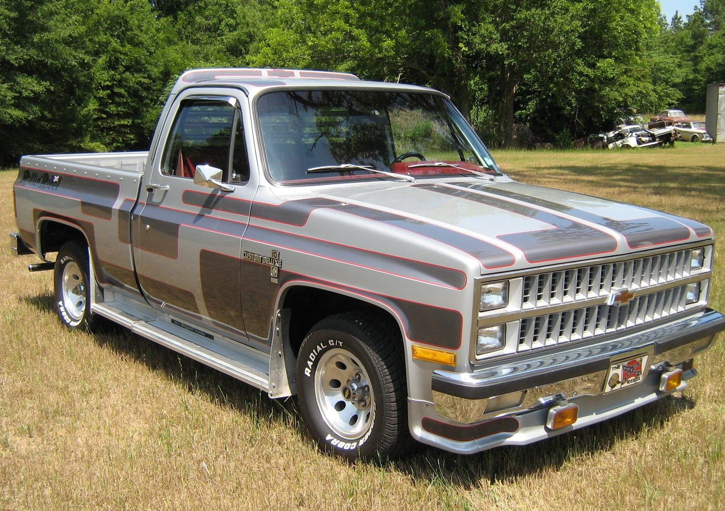 Rebel With A Cause 1981 Chevrolet C10