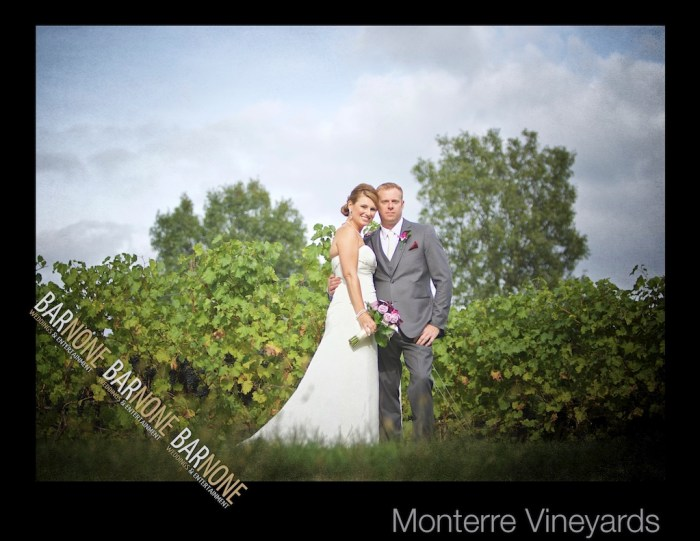 Bar None Photography - Monterre Vineyards Wedding 1294