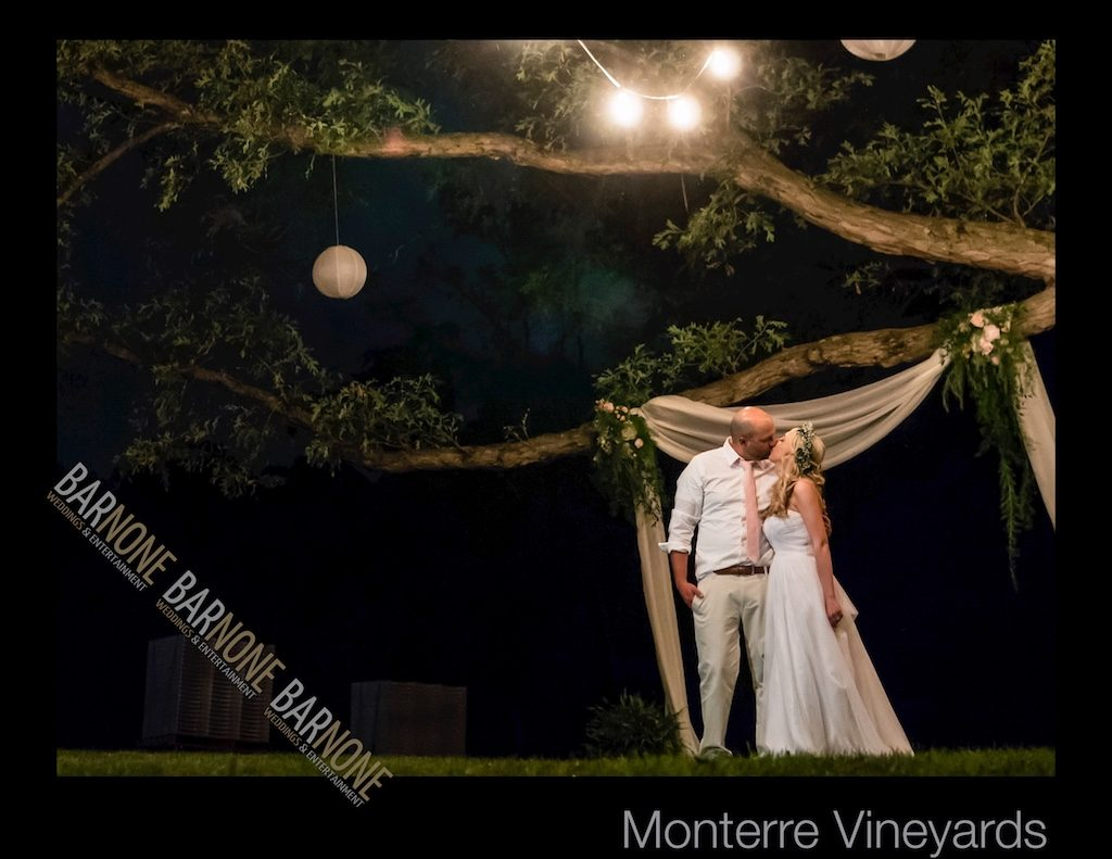 Monterre Vineyards Wedding Photography - Bar None Photography 1953