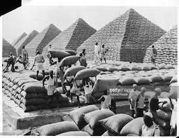 groundnut pyramids.jpg