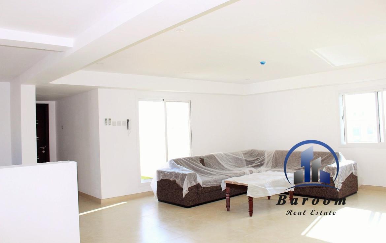 Brand new Penthouse Saar 1