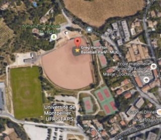 greg-hamilton-baseball-park