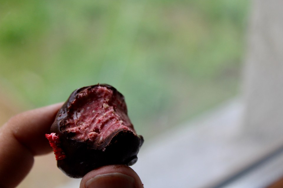 so focused on a goal, that we miss the point - Paleo Strawberry Cashew Truffle