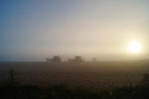 Harvest - Barrett Agri