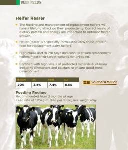 Heifer Feed infographic