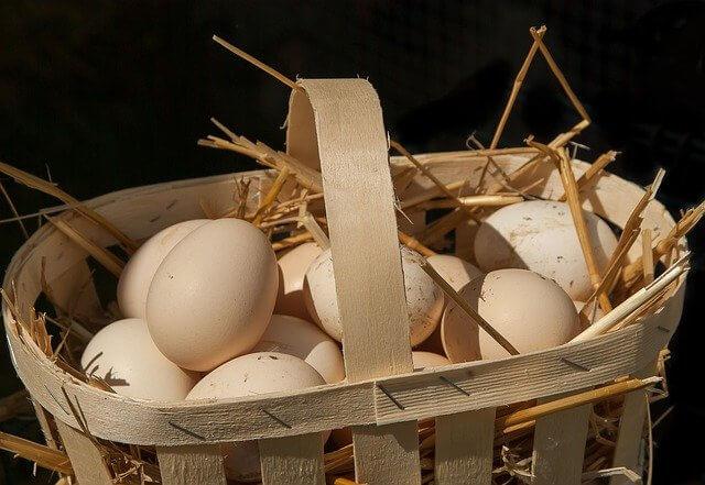 Punnet of eggs
