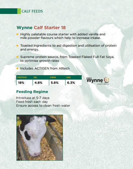Infographic on Wynne calf start 18 feed