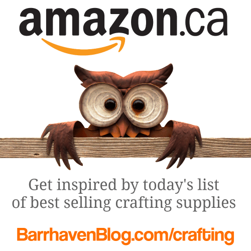 Best Amazon Canada Products