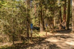 Big Trees Trail Parking Lot