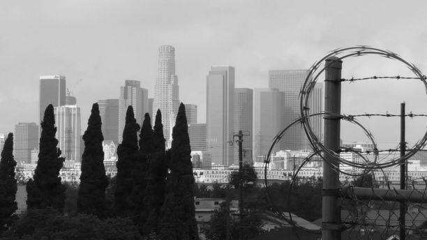 Los Angeles Love