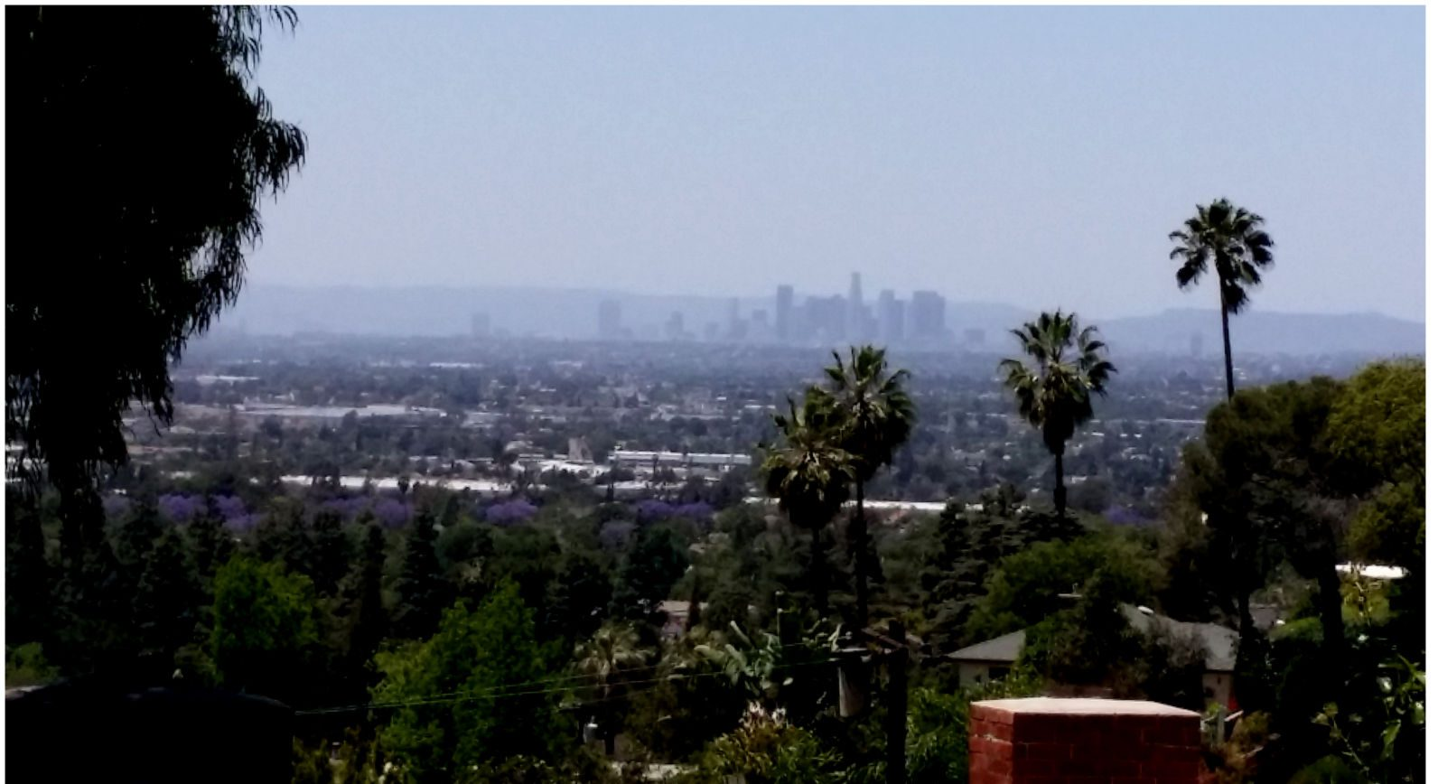 why we dig L.A.