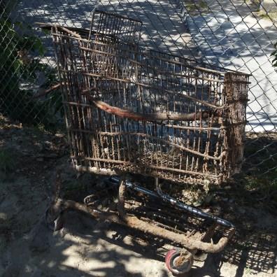 LA River Cleanup