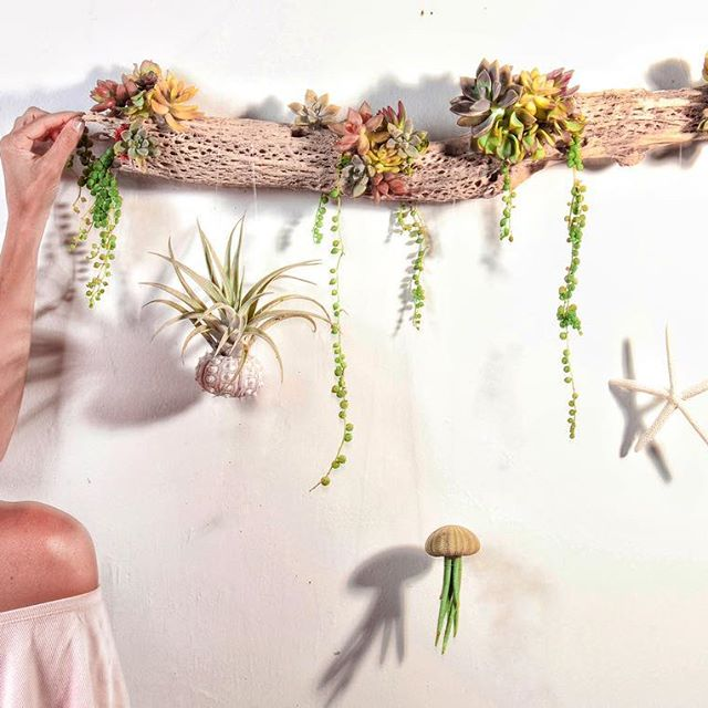 found & natural objects with succulents make for great gifts