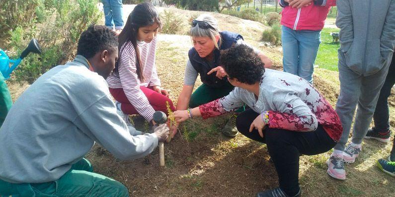 Plantación de aromáticas en la Rocalla 28-02-2020