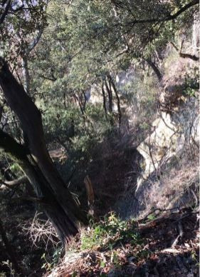 Sentier d'accès à la Baume Lambert