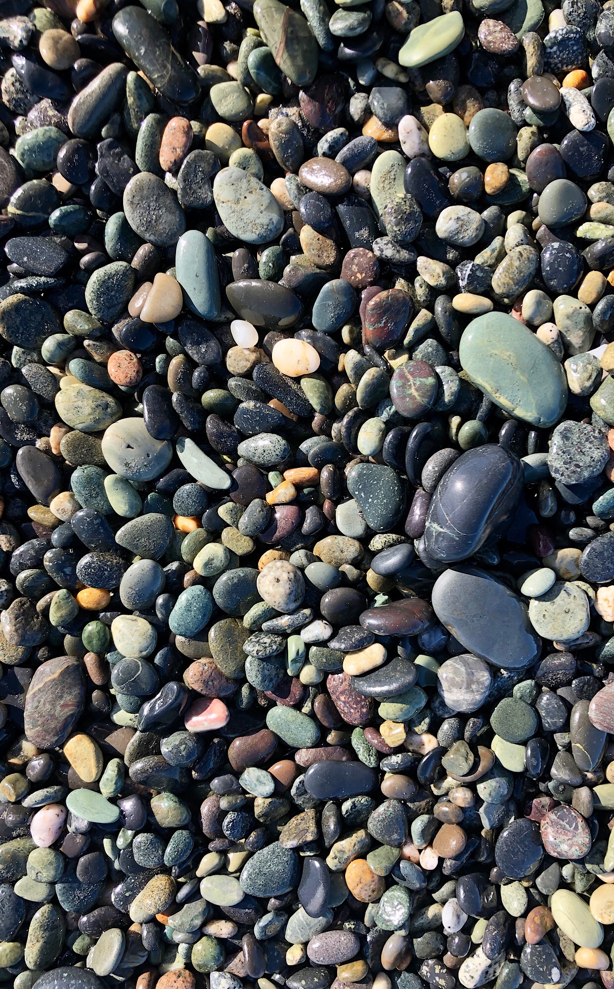 Gemstone Beach NZ