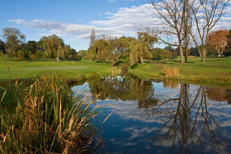 Early Morning Reflection at Royal Johannesburg & Kensington Golf Club