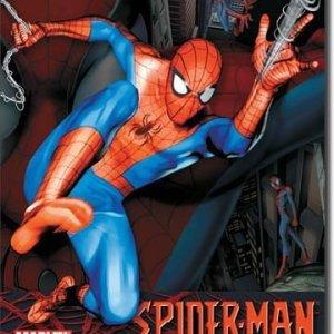 Spider-Man Tin Sign
