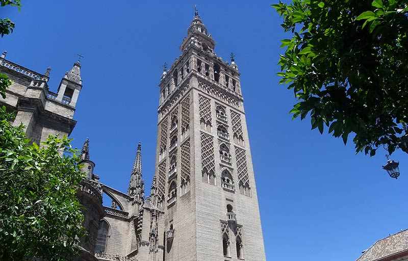 cathedral seville tapas