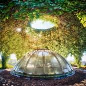 Ogród Botaniczny na dachu BUW