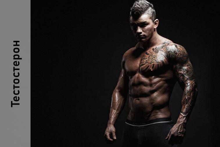 Средство повышение тестостерона