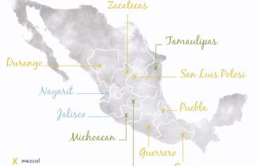 Mezcal Vs Tequila – an Infographic