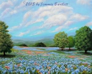 Blue Bonnet Fields in Texas