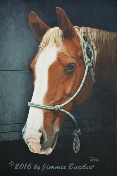 Portrait of a Spirited HorseWEB