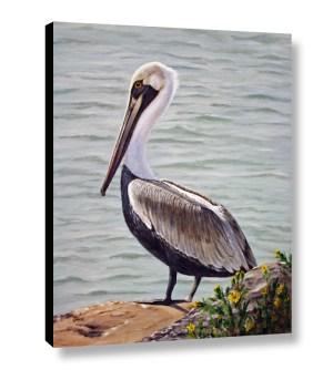 Pelican Web 3d