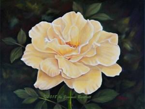 Sunshine Rose WEB