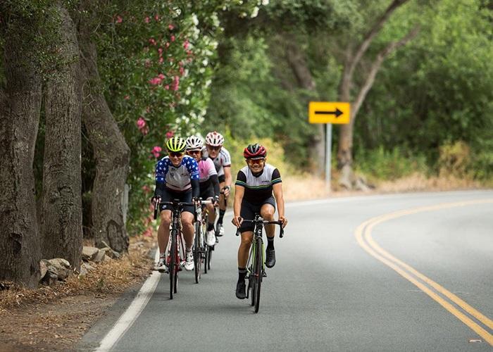 Barton Haynes San Diego Forest