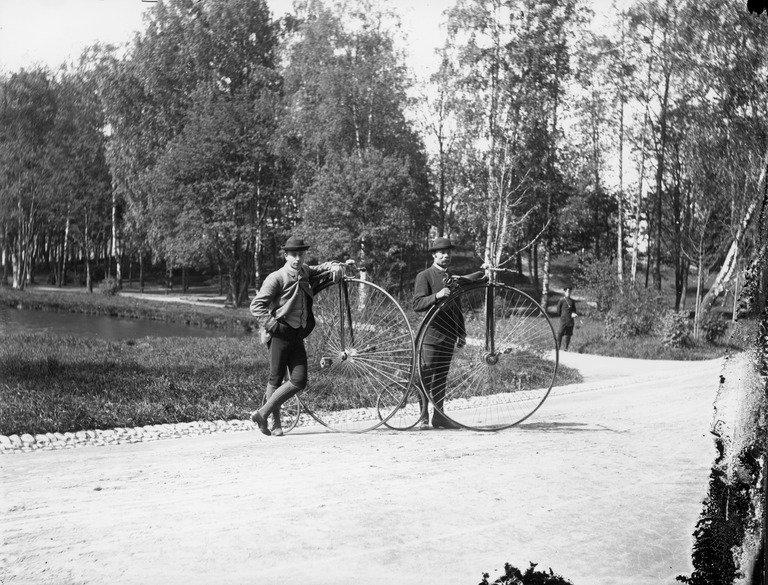 Barton Haynes Cycle
