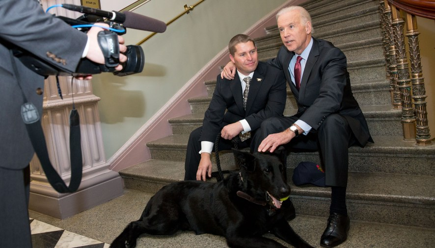 SEAL DOG airs on Smithsonian Channel November 11