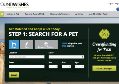 New Crowdfunding Site Helps Pet Rescues